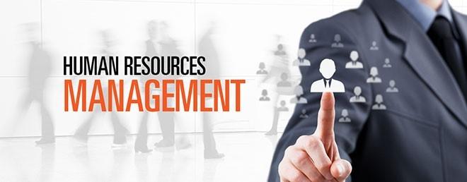 7 نکته مهم در مدیریت منابع انسانی با سیلور رسانه